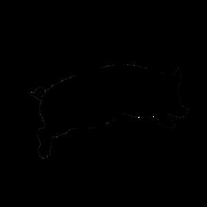 Bacon - Schwein - Grillen
