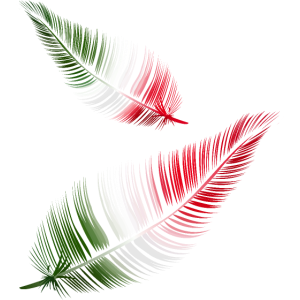 italienische Federn in rot weiß und grün