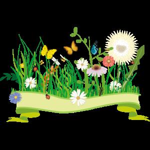 saftige Frühlingswiese mit Blumen und Insekten