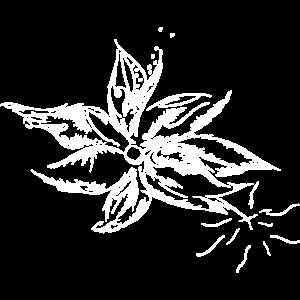 Kreative Blüte