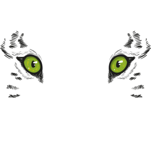 Stay At Home And Pet Your Tiger –Tiger King Exotic