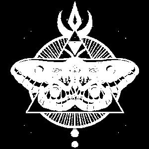 Occult carpet moth