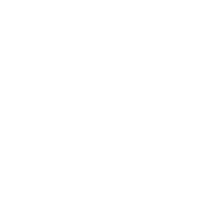 Bachelor Absolvent 2020