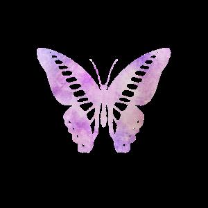 Schmetterling Butterflies