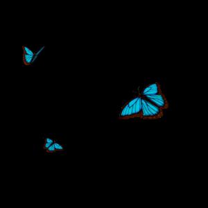 Butterfly Effect 2 2
