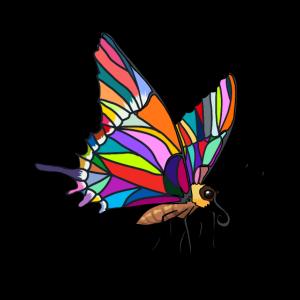 Falter Schmetterling Insekt Natur Frühling Tiere