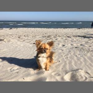 Tina am Strand