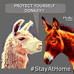 Protect Yourself Donkey - Coronavirus