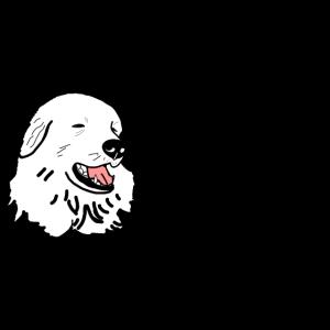 Pyrenäen-Sennenhund, dein bester Freund