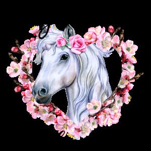 Weißes Pferd mit Blumen Liebe Pferde