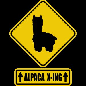 Alpaka kreuzt die Strasse