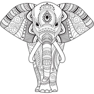 FreelyClothing - Elefant
