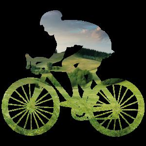 Radfahrer Silhouette Natur