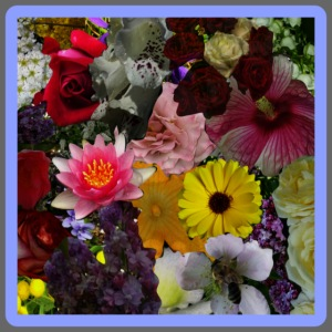 in BLUMEN GESTYLT = FLOWERS COLOR for EVERYBODY