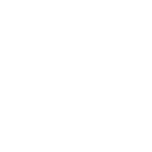 ALLTAGS RETTER 2020 Corona Spruch system relevant