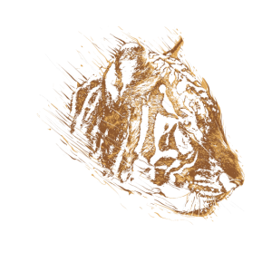 Joe exotisch,Shirt Tiger Chill Gay ,funny Zoo