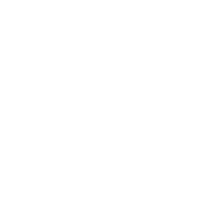 Tiger King - König der Tiger