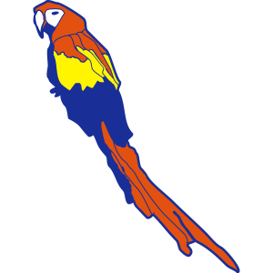 Bunter Papagei-Schar Parrot Ara Vogel tierliebe