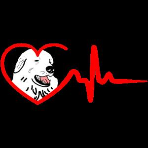 Herzschlag des Pyrenäen-Sennenhundes