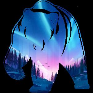 Baer Wildnis Nacht Polarlichter