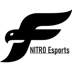 new NITROESPORTS logo