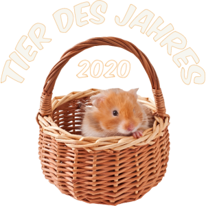Tier des Jahres 2020 Süßer Hamster Hamstern Corona