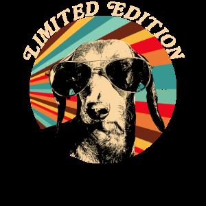 Dackel mit Sonnenbrille limited Edition retro