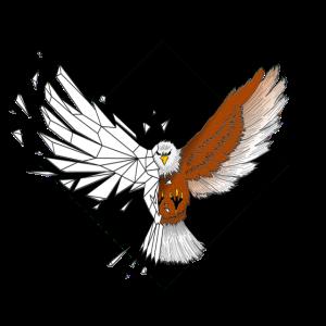 Geometrischer Adler