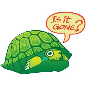 Green turtle asks if can come out of shell