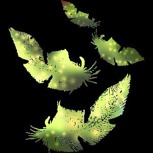 grüne Federfedern
