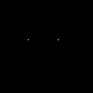 Lama Kopf