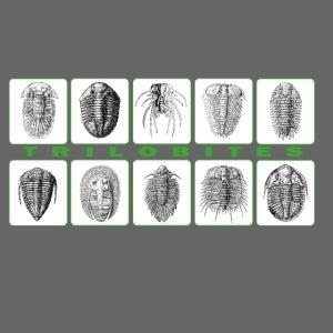 Trilobites block t shirt.