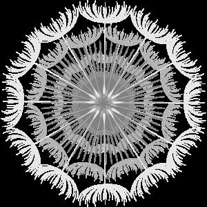 sehr filigranes Mandala aus Pusteblumen Samen