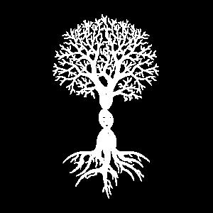 Baum Baumwurzel DNA Geschenk