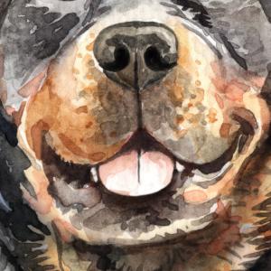 Rottweiler Gesichtsmaske Hund Schutz für Mund Nase