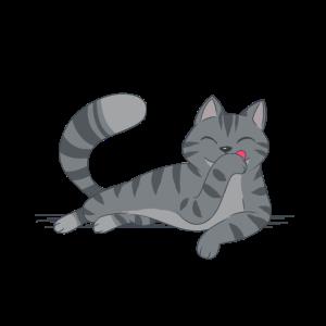 Katze Katzen Pause Relaxen Müde Kitten Miau
