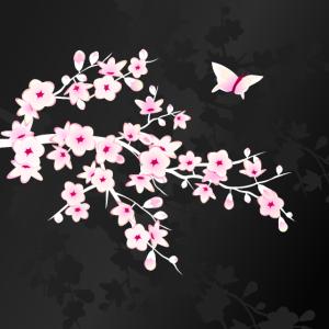 Rosa Kirschblütenzweig auf schwarzem Hintergrund