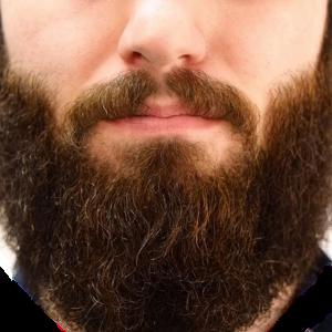 Realistischer Bart