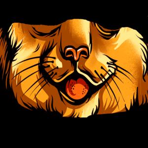 Schnauze Katze Raubtier Schnurrbarthaare Zunge