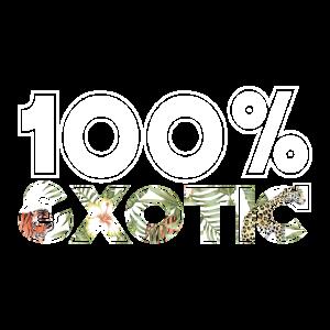 Tiger 100% Exotisch Großkatze Exotic Raubtier King