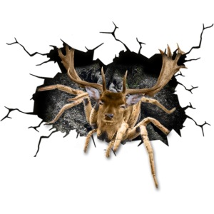 Gesichtsmaske Mundmaske Nasenmaske Spinne Hirsch