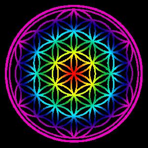 Blume des Lebens - Regenbogen