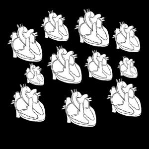 Gesichtsmaske Anatomie Herz