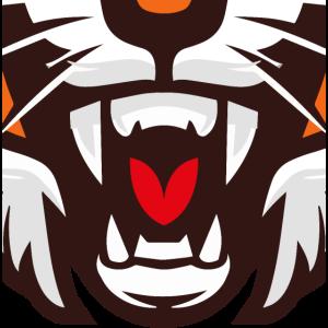 Tiger Brüllen Maul Zähne Maske Gesichtsmaske