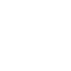 Kung Fu Rules