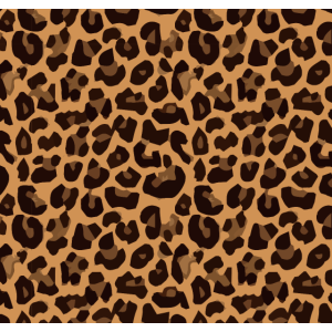 Gesichtsmasken Leopard Muster