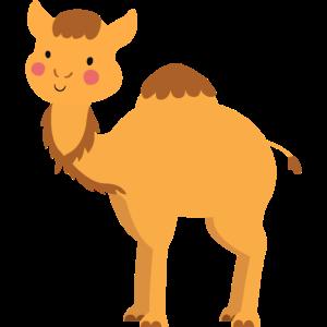 Süßes Kamel