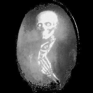 Skelett Porträt Horror Halloween