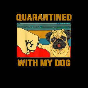Mit meinem Hund unter Quarantäne gestellt