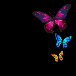 Schmetterlinge, Butterfly, Natur